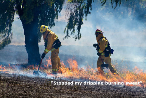 wildland-firefighter-sweathawg.jpg